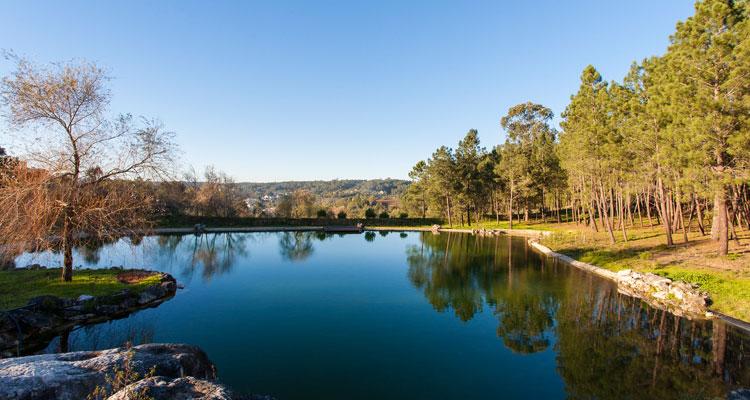 Colina dos Piscos, novo espaço de turismo rural
