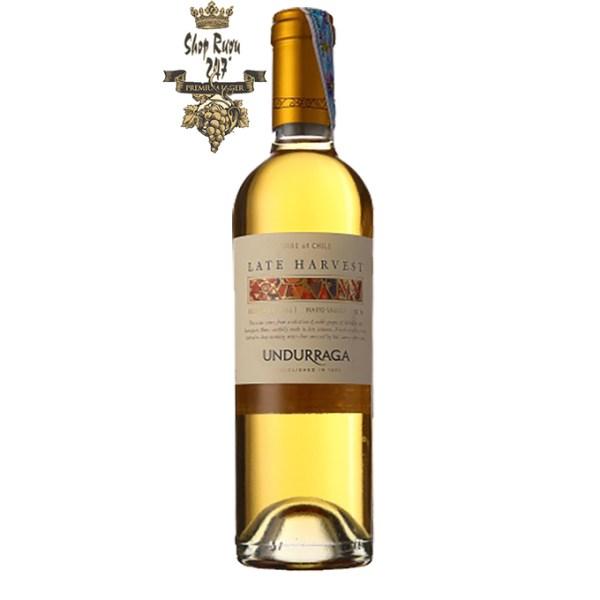 Rượu Vang Chile Late Harvest 0.375L có màu vàng đậm với vị ngọt hương trái cây, béo ngậy vị mật ong