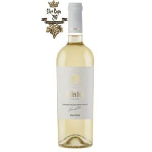 Rượu Vang Ý Fantini Collection Superme Italian White Blend khi nhìn sẽ thấy có màu vàng rơm với ánh xanh lá