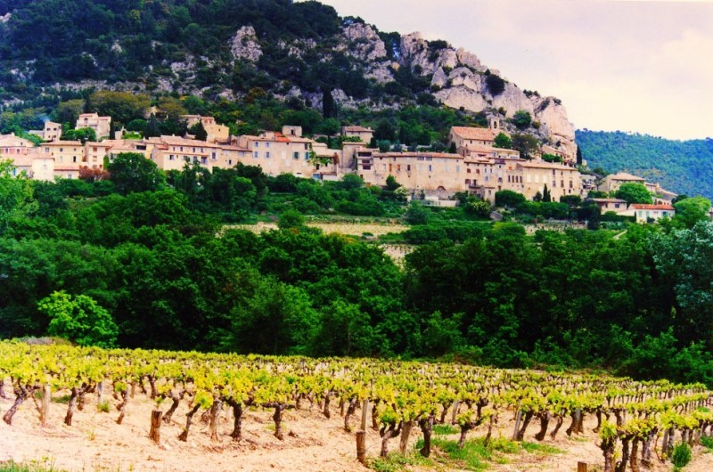 cotes_du_rhone_village_seguret_vineyards-980x649