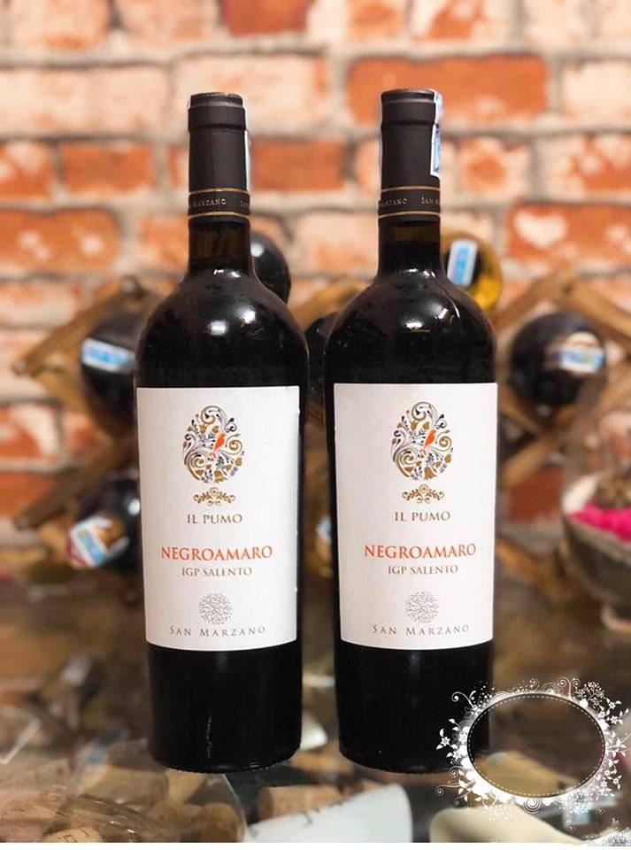 Bán rượu vang ý IL Pumo Negroamaro tại Hạ Long giá tốt nhất