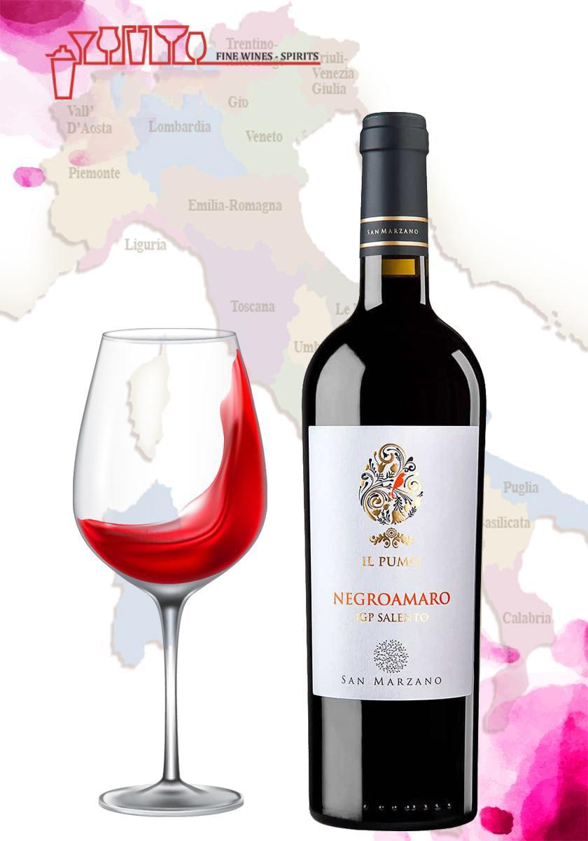 Bán rượu vang ý IL Pumo Negroamaro tại Ninh Bình giá tốt nhất