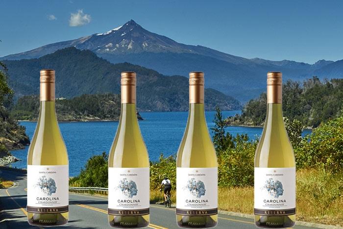 Bán rượu vang santa carolina reserva chardonnay tại Hải Dương giá tốt nhất