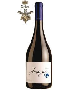 Rượu Vang Chile Đỏ Amayna Syrah có mầu tím mãnh liệt. Hương thơm của các loại trái cây mầu đỏ và đen hòa trộn hài hòa