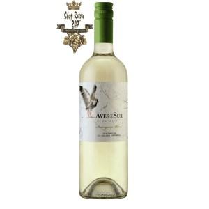 Vang Chile Aves Del Sur Sauvignon Blanc có mầu vàng nhạt hấp dẫn. Hương thơm mạnh mẽ của trái cây như cam quýt kết hợp với thân cây cam thảo
