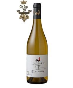 Rượu Vang Chile Trắng Cantoalba Chardonnay có mầu vàng rơm tươi sáng. Hương thơm mạnh mẽ của các loại trái cây nhiệt đới