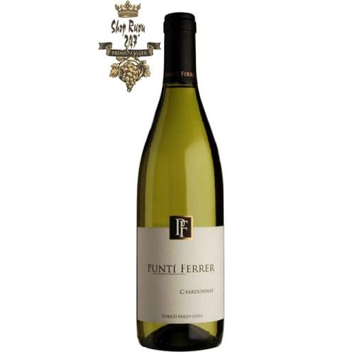 Vang Chile Trắng Punti Ferrer Chardonnay có mầu vàng rơm với ánh xạ vàng . Rượu có hương thơm của các trái cây nhiệt đới như dứa, đào