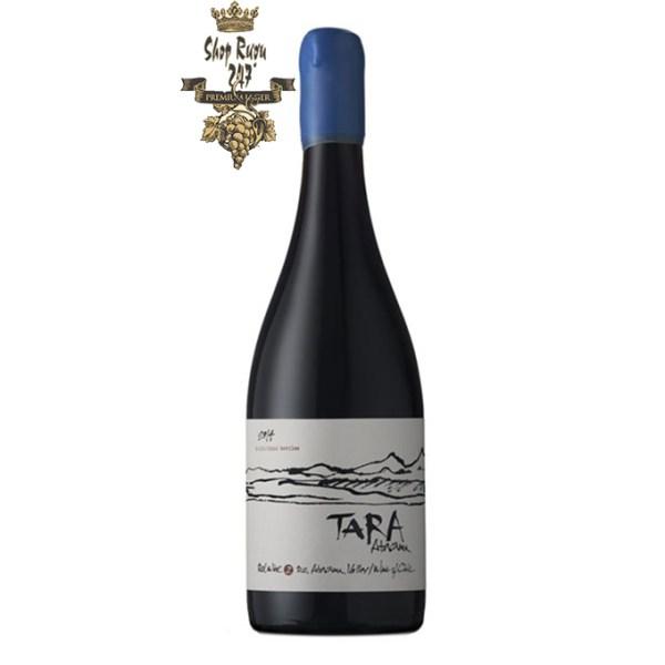 Rượu Vang Chile Đỏ Tara Syrah nó có màu đỏ ánh tím mãnh liệt, trẻ trung. Mùi hương là hỗn hợp của các loại trái cây đen, thảo dược và than chì