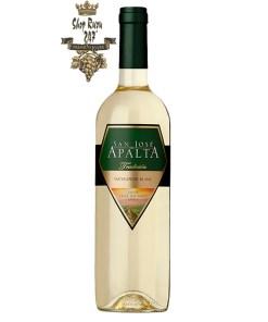 Chai Rượu Vang Trắng Apalta Sauvignon Blanc