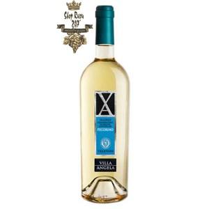 Rượu Vang Trắng Villa Angela Doc Pecorino có mầu vàng rơm đậm tươi sáng. Hương thơm mạnh mẽ dễ chịu và tinh tế của các loại trái cây như cam quýt, táo và các loại thảo mộc.