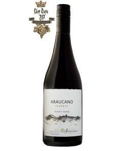 Francois Lurton Hacienda Araucano Reserva Pinot Noir có mầu đỏ hồng ngọc đẹp mắt. Hương thơm phức hợp của dâu tây và anh đào.
