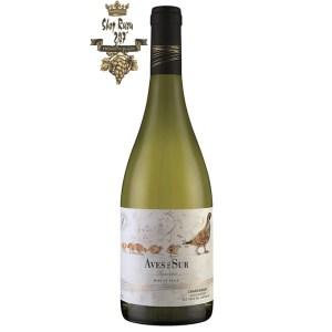 Aves Del Sur Reserva Chardonnay có mầu vàng sáng ánh xanh. Hương thơm của các loại quả như đào trắng, chuối, vải và tinh dầu cam quýt cùng hương thơm của hạt dẻ nướng và vani.