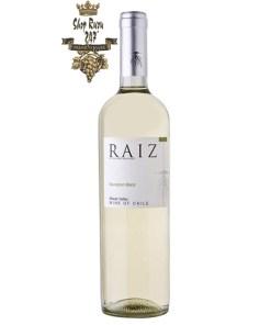 Rượu Vang Chile Trắng Raiz Sauvignon Blanc có màu vàng rơm đẹp mắt. Hương thơm mạnh mẽ của chanh, kiwi cùng gợi ý của táo xanh