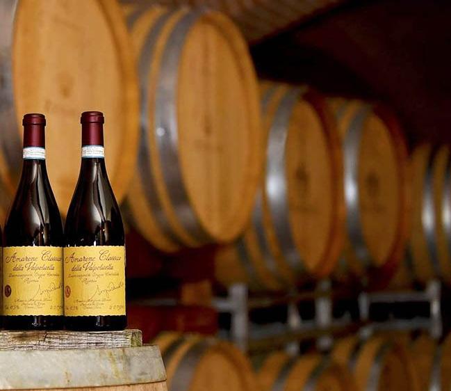 Rượu Vang đỏ Zenato Amarone Della Valpolicella Classico DOCG trong xưởng sản xuất