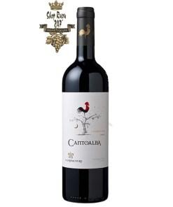 Rượu Vang Chile Đỏ Cantoalba Malbec có mầu đỏ sẫm hấp dẫn và tươi sáng. Hương thơm của hoa và trái cây hoang dã và các loại hạt.