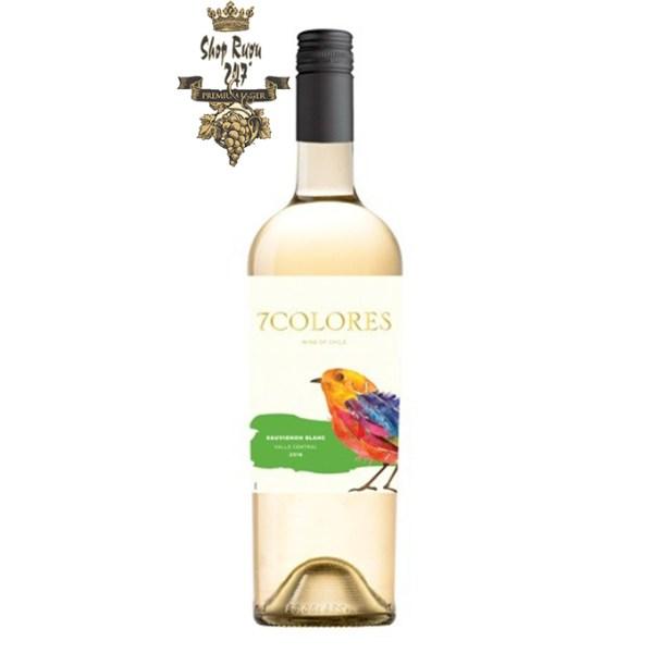 Rượu Vang Chile Trắng 7Colores Sauvignon Blanc có màu vàng nhạt ánh xanh. Hương thơm của các loại hoa quả như cam quýt, thảo dược