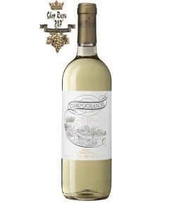 Rượu vang Ý Antinori Campogrande Orvieto Classico DOC có màu bạch kim sang trọng, nhã nhặn, hương thơm tinh tế phù hợp dùng trong nhiều bữa tiệc