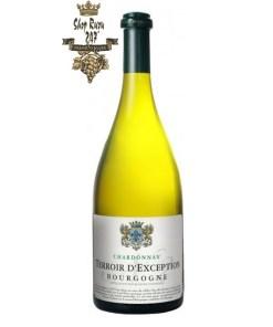 Rượu Vang Đỏ Puligny Montrachet Champ Canet có mầu vàng nhạt sống động tinh tế. Hương thơm mãnh liệt và dai dẳng của trái cây với hương vị