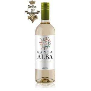 Rượu Vang Trắng Santa Alba Sauvignon Blanc có mầu vàng nhạt ánh xanh. Hương thơm nổi bật của cam quýt và táo xanh với một chút gợi ý
