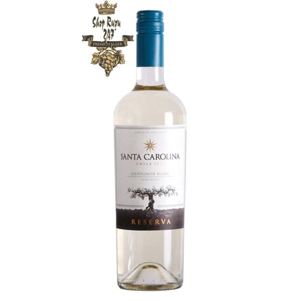 Vang Chile trắng SANTA CAROLINA Reserva Sauvignon Blanc có mầu vàng nhạt. Hương thơm của các loại cam khô,