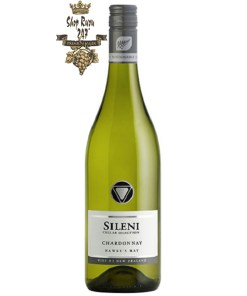 Sileni Cellar Selection Chardonnay có mầu vàng rơm. Hương thơm nhẹ nhàng của gỗ sồi, cam quýt và hương vị của trái cây và hoa quả.