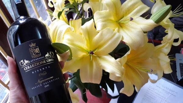 Rượu Vang ATTANASIO COLLEIONE ORO Negroamaro khoác lên mình một màu đỏ đậm đẹp mắt.Với hương vị