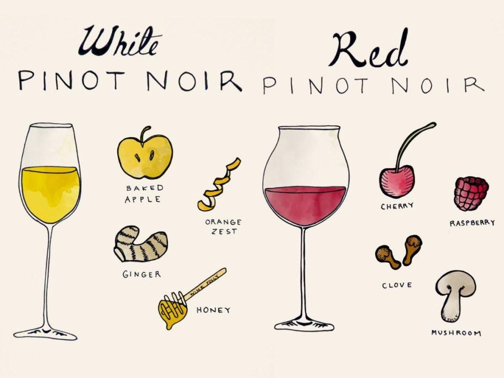 Điều thú vị là rượu vang đỏ có hàm lượng chất chống oxy hóa cao hơn rượu vang trắng !