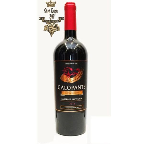 Rượu Vang Đỏ GALOPANTE Gran Reserva Cabernet sauvignon có màu đỏ ruby đậm đẹp mắt. Hương thơm trái cây