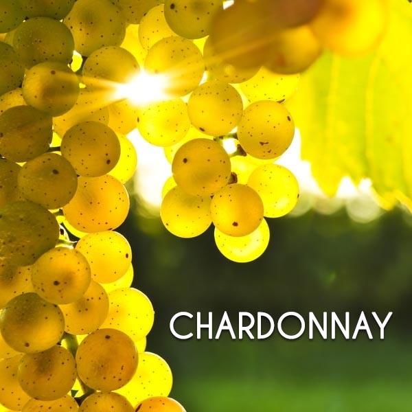 Đặc trưng của một số giống nho phổ biến : Chardonnay, Malbec, Pinot Noir,…