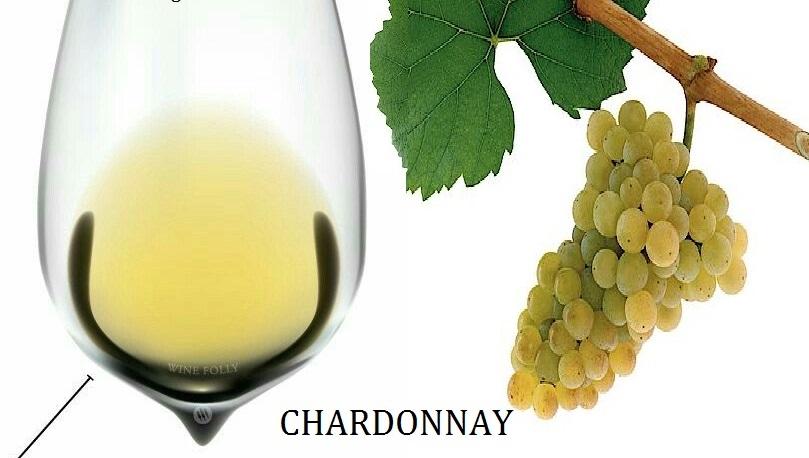 Nho Chardonnay có nguồn gốc từ Burgundy, Pháp. Hiện nay thì giống nho này được trồng ở bất cứ đâu sản xuất
