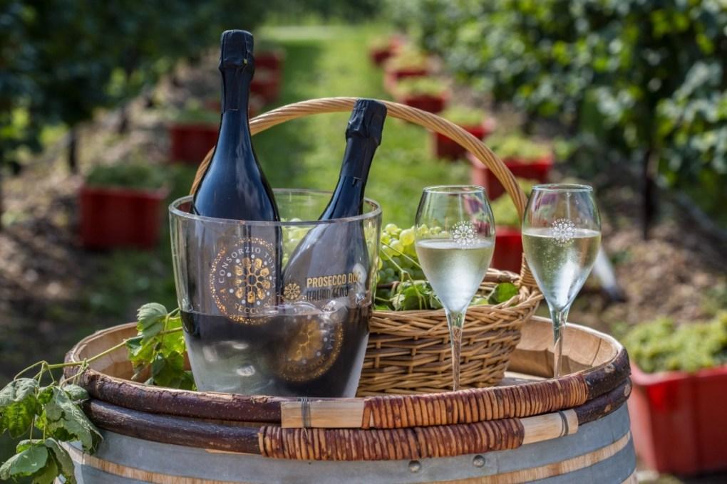 Rượu vang Prosecco DOC đến từ vùng đồng bằng của Veneto, cho ra loại trái cây đơn giản có thể thu hoạch bằng máy. Các mệnh giá Prosecco Treviso