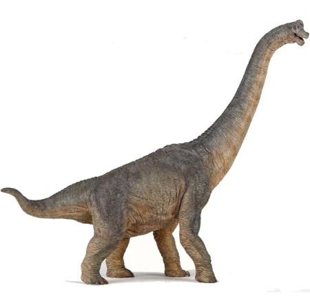 Dinosaur Brachiosaurus dinosaurus legetøj dinosaurus Papo dino Papo gave til dino fan