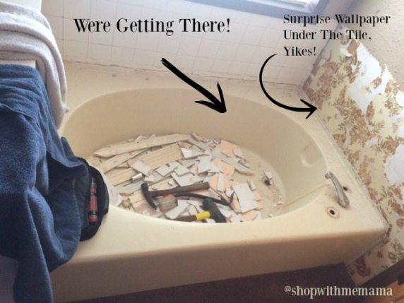 Remodeling My Master Bathroom Is No Easy Task Mansfield Plumbing Tubs