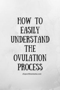 Easily Understand The Ovulation Process