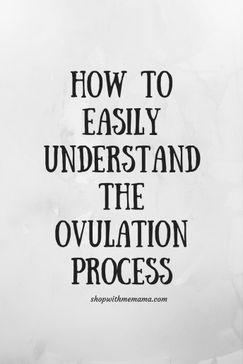 How To Easily Understand The Ovulation Process And Get Pregnant Quicker