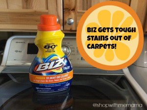 Get Stains Out Of Your Carpet With Biz Stain Fighter!