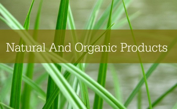 Natural And Organic Products You Must Check Out!