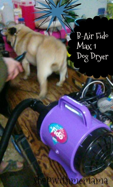 Groom Your Pets At Home With B-Air Fido Max 1 Dog Dryer