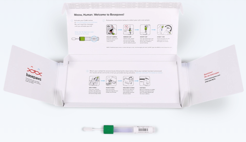 Cat DNA Kit From Basepaws