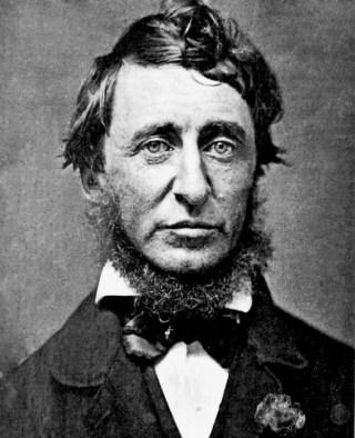 Henry David Thoreau ritratto nel giugno del 1856