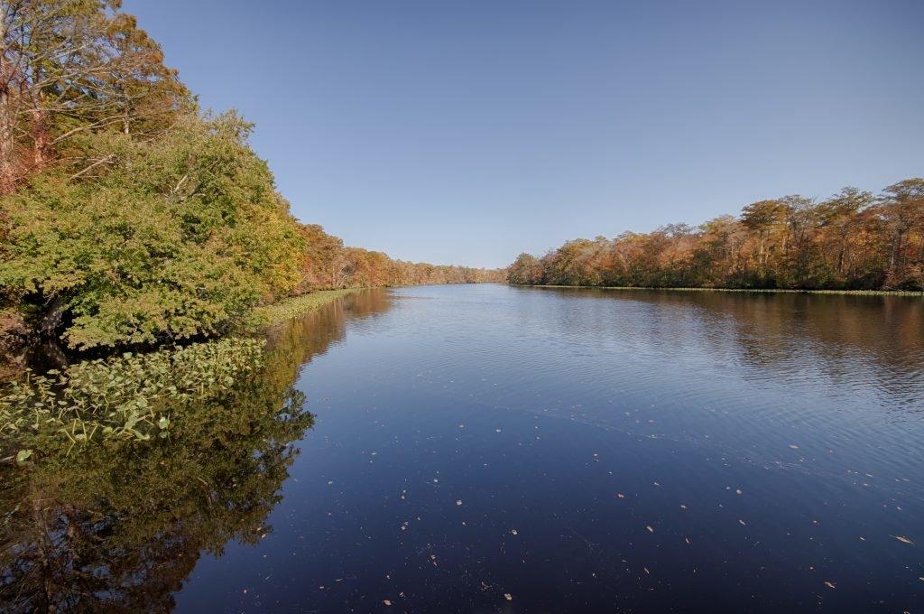 Pocomoke River State Park Shad Landing Or Milburn Landing