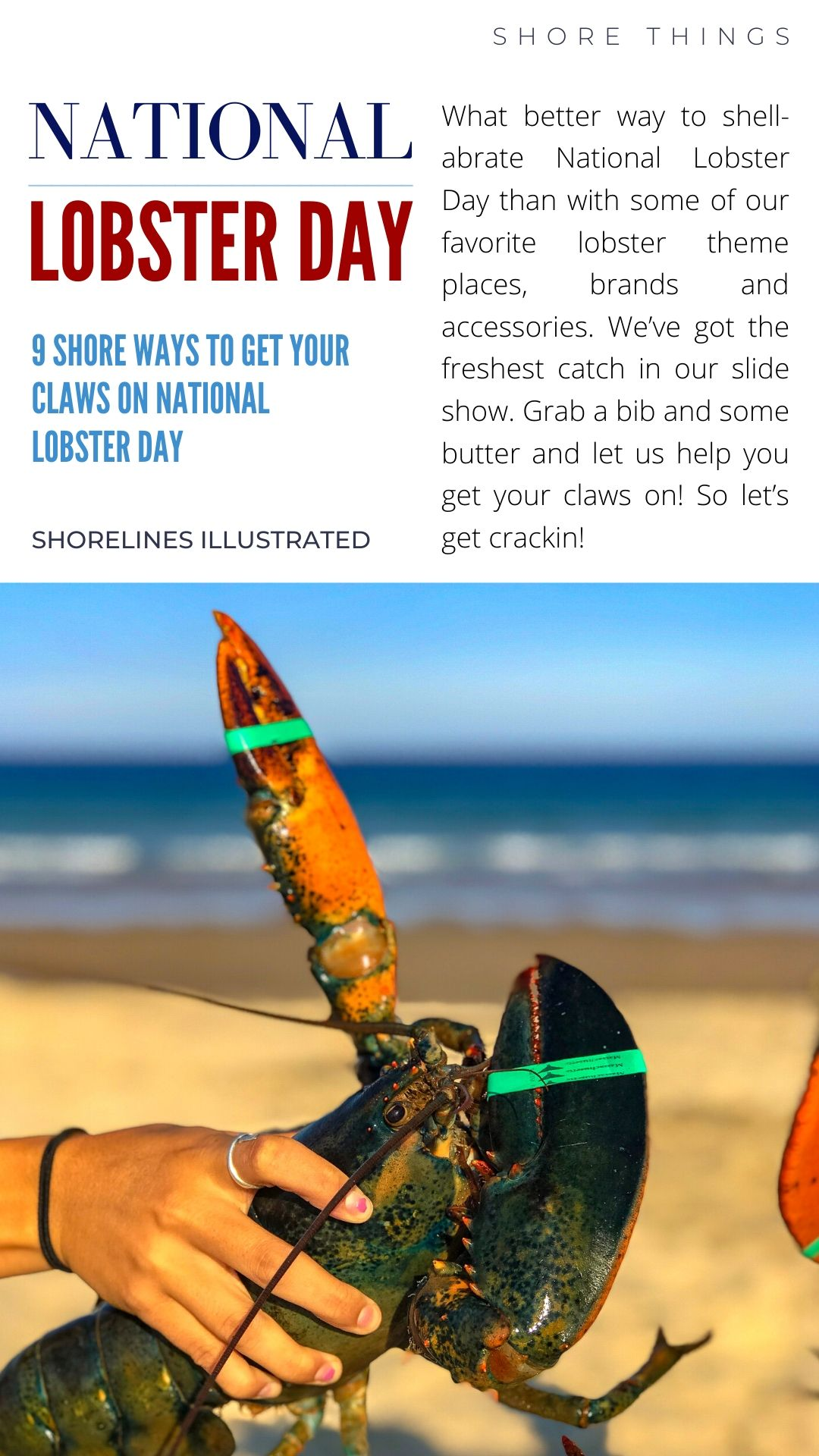 LOBSTER DAY PINS-2
