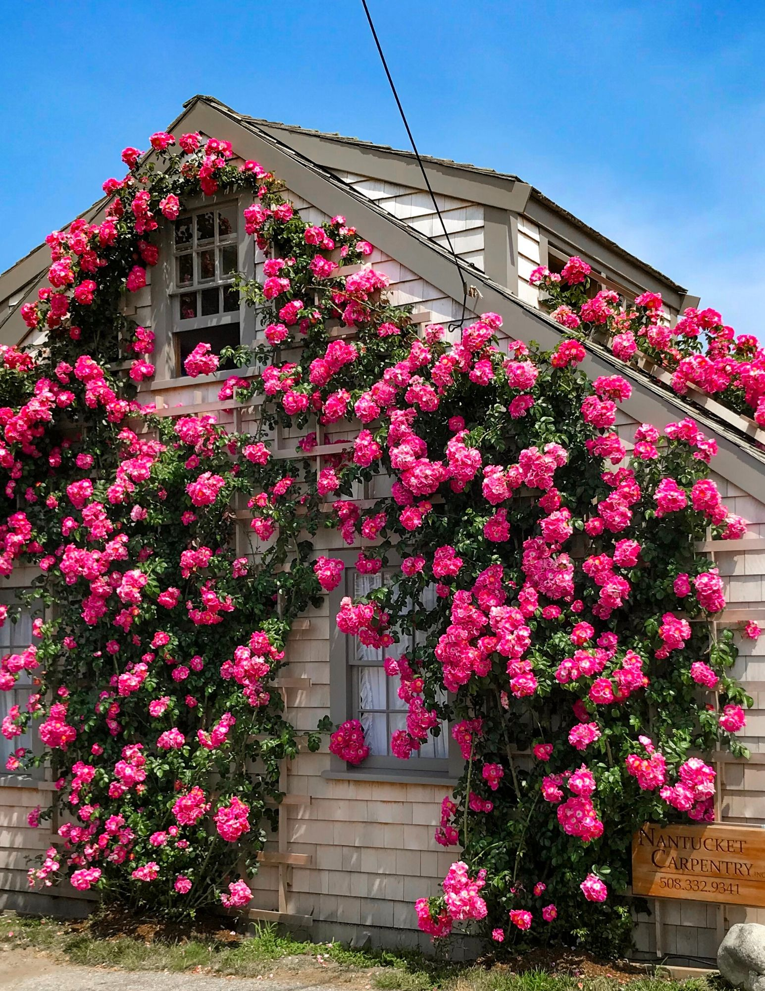 Nantucket Rose Covered Cottages in Sconset-12