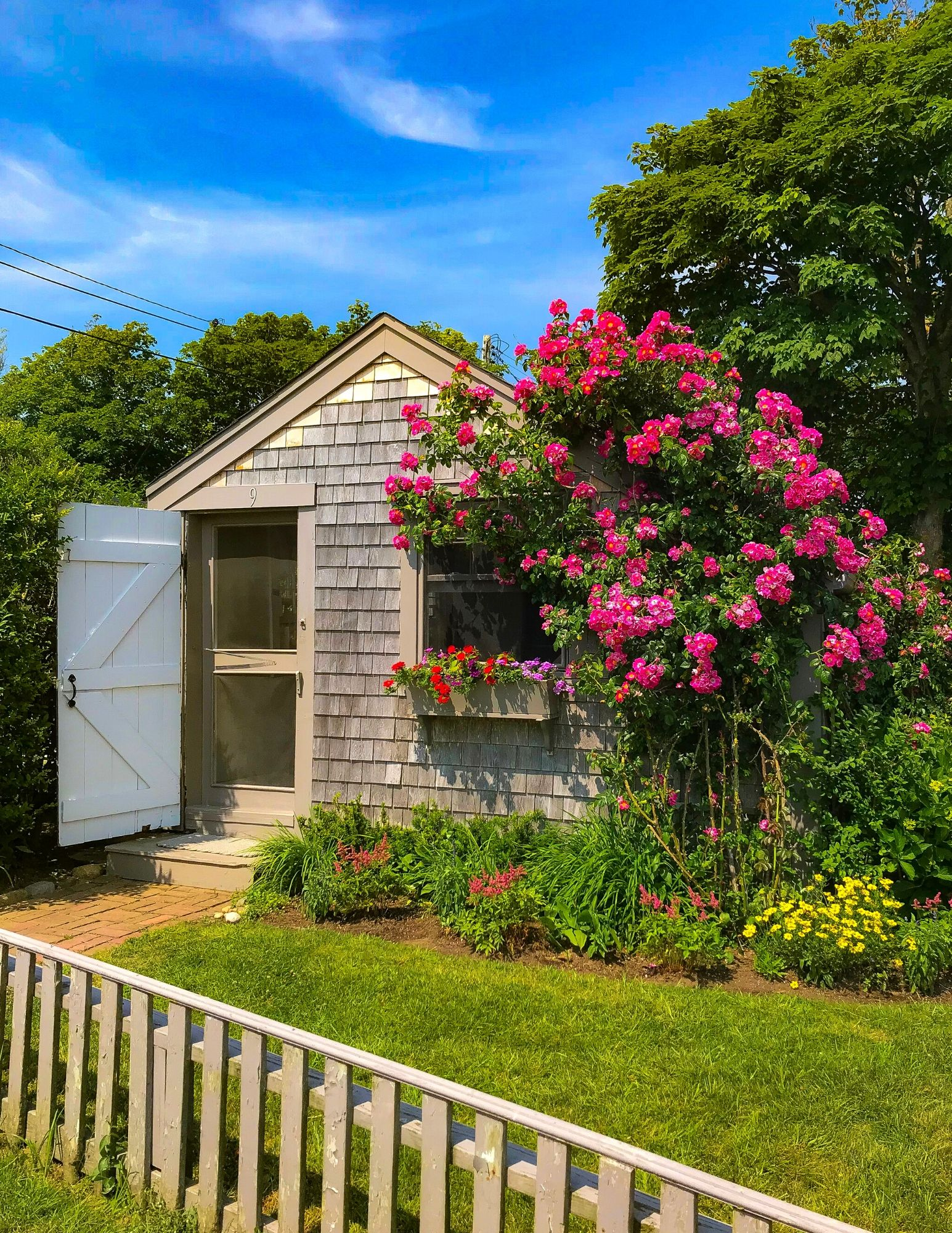 Nantucket Rose Covered Cottages in Sconset-3