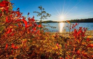Fall in McCall