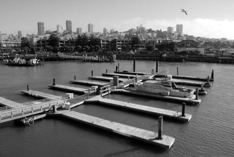 Pier 39 tourist
