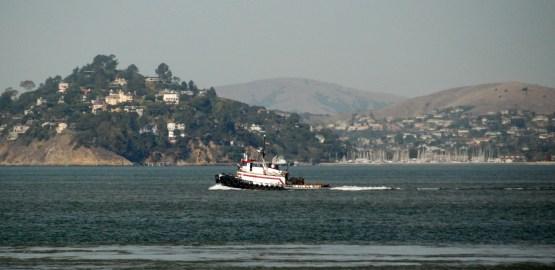 Alcatraz (68)