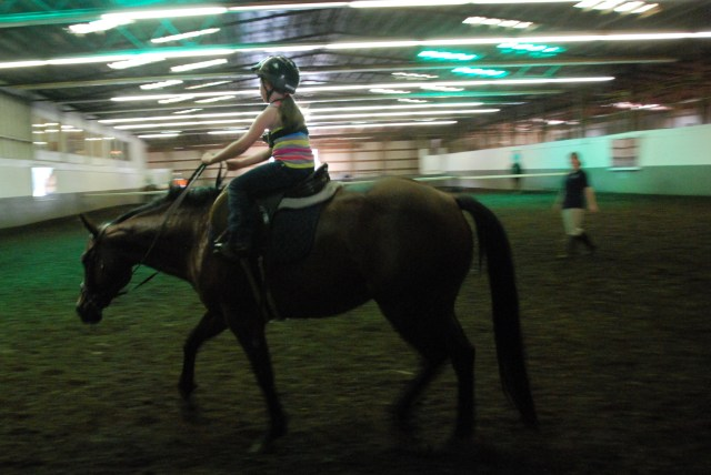 MD Horse Training (14)