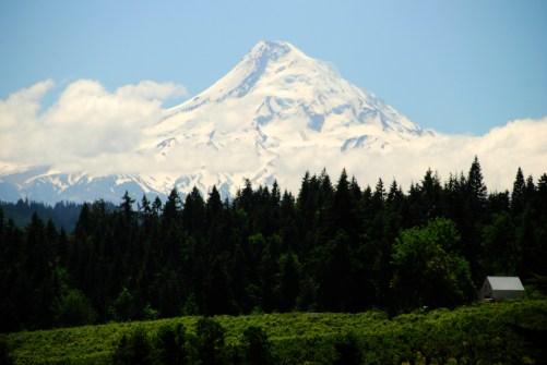 Portland (33)