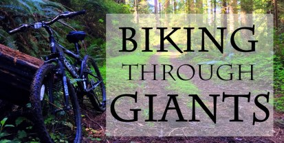 89-biking-through-giants-e1518635911123